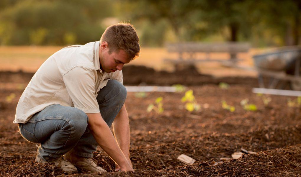 comment aménager un jardins ?